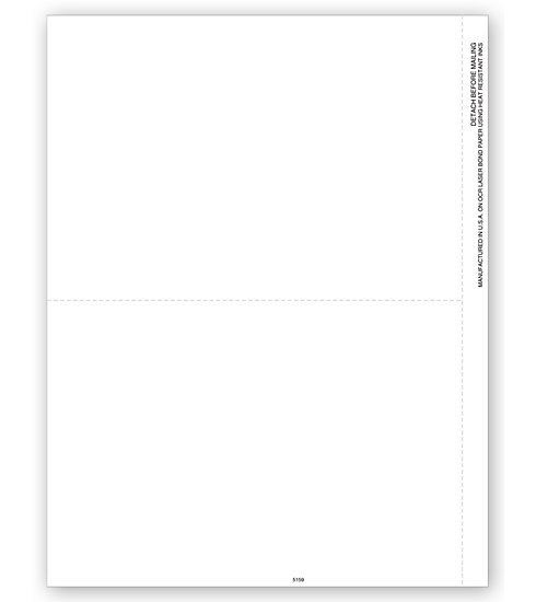 TF5159B - Bulk 1099 Forms Blank, 2-up with Copy B Backer