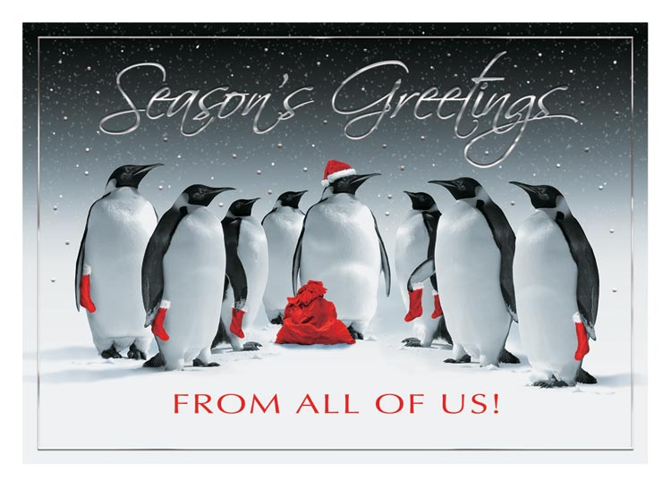 H14659 - Bird Holiday Cards - All In