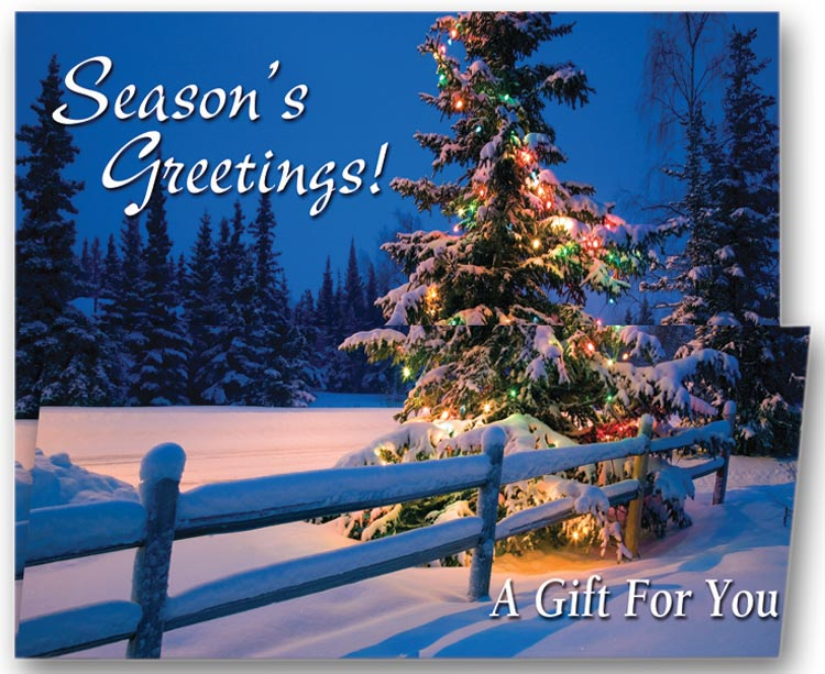 Holiday Greeting Cards with a Custom Printed Coupon.