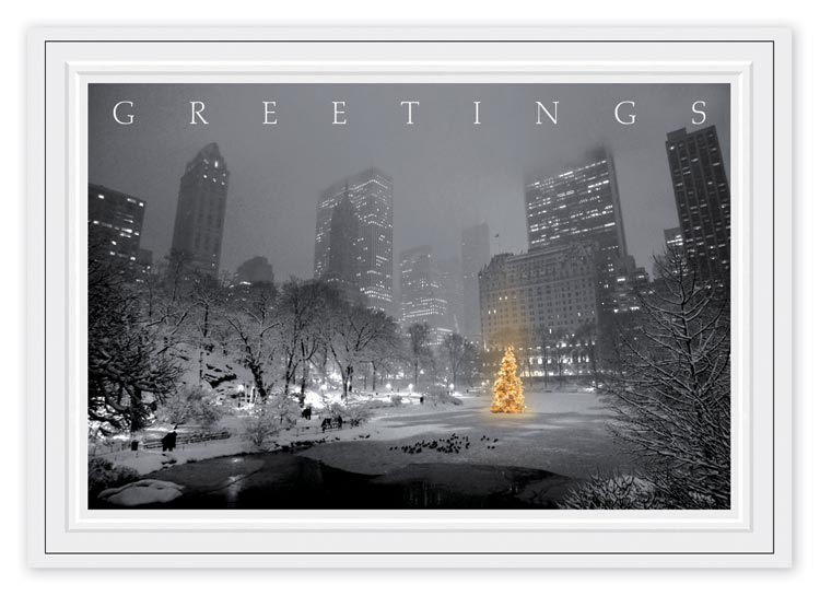 HP14306, City Park Glow Christmas Cards
