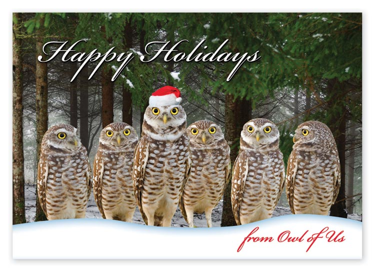 Send warm holiday greetings with this witty and budget-friendly Owl of Us Card.