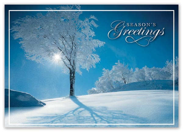 Holiday card with elegant and artistic sky blue background and custom options