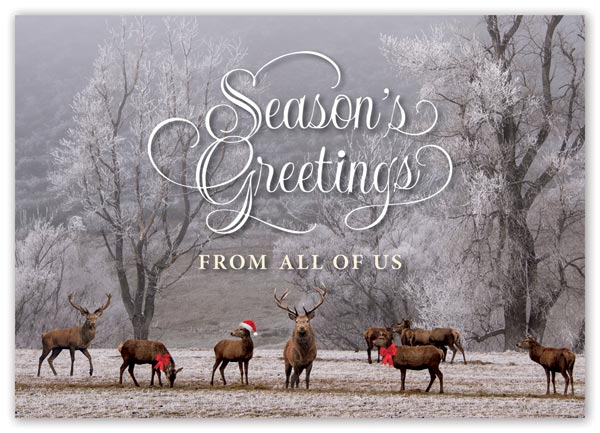 This is a custom printed holiday card with 8 deer, 2 with red bows and 1 with a Santa hat in a forest winter setting.