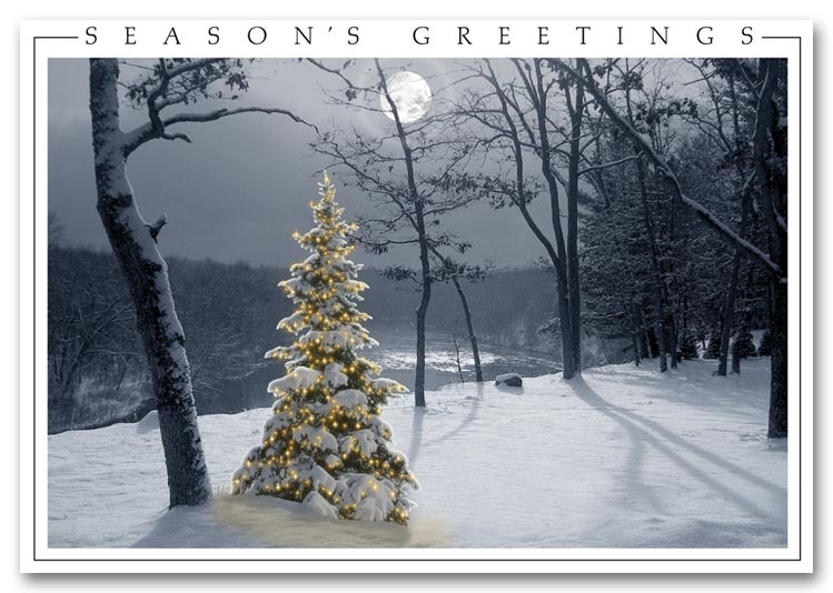 Send beautiful wishes with a calming snow scene with a white Christmas tree