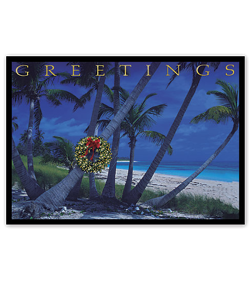 Send your best wishes with this holiday tropical card set on a night beach.