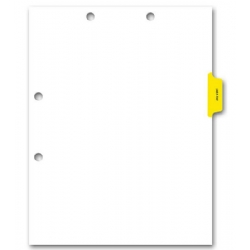 Preprinted Color-Coded Chart Dividers - Lab/X-Ray Tab