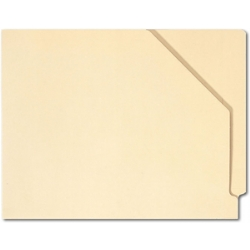 Expandable Medical File Folder with Pocket