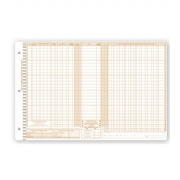 Daily Control Sheets, Pegmaster, Payment