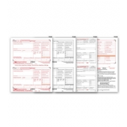 Laser W-2 Tax Forms Kit - Employee Copies