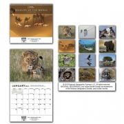 2020 National Geographic Wall Calendar