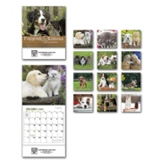 2019 Puppy and Kitten Calendars