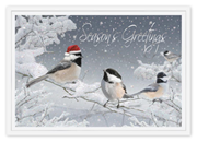 H14649, Red-Capped Chickadee Holiday Cards