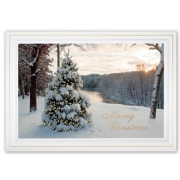 H15645, At First Light Christmas Cards