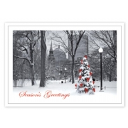 HP14305, Boston Splendor Christmas Cards