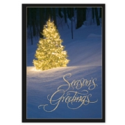 HP15302, Shimmering Evergreen Holiday Cards