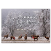 Holiday Card with 8 Deer in Forest