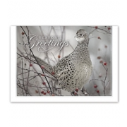 Holiday Card- Feathered Friend