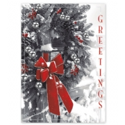Holiday Cards- Magnificent