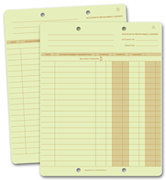 Accounting Ledger Cards
